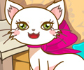 Cathy The Pretty Cat